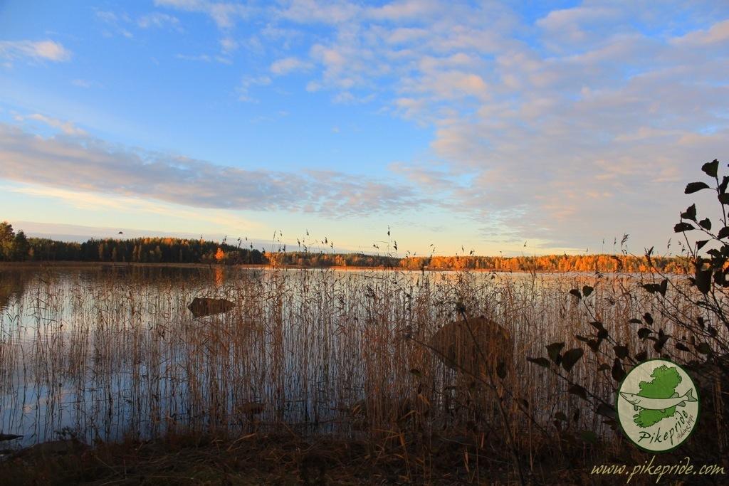 pescare baltico