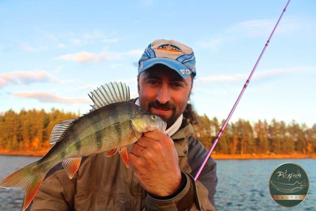 pesca-al-persico-reale