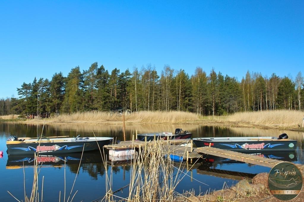 lucci-baltico