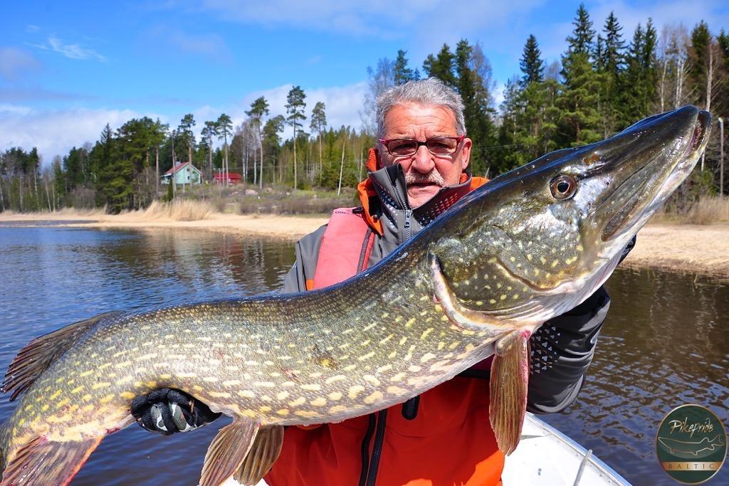 pesca-in-svezia